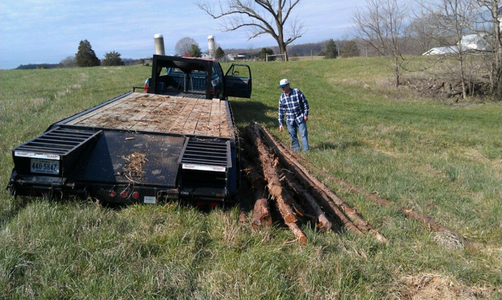 Barry Penn Hollar (Madison) unloads poles donated by Shane Fletcher (Locust Grove), hauled on Bordeaux Farms trailer (Madison).    Additional varieties can now be trialed in cooperation with the Carver Center and VSU.